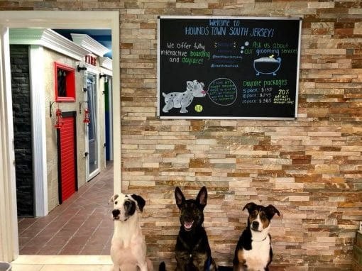 Pet Care Franchise Opens First South New Jersey Location